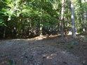Smíšený les pokrývá Blaník.