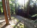 Přístupová cesta na Velký Blaník od Louňovic.