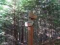 Rozcestí pod vrcholem Velkého Blaníku. Má značené dva směry: Veřejová skála a rozhledna.