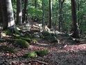 Pod vrcholem hory Velký Blaník to vypadá, jako by tu kdysi vedla cesta.