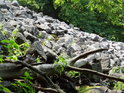Kamenná lavina na Volské hoře u Stadic.